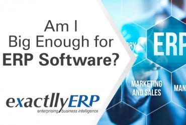 Am-i-big-enough-for-ERP-software
