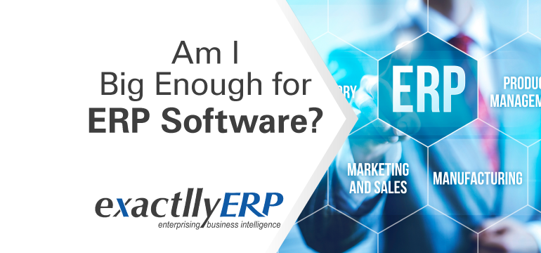 Am-i-big-enough-for-ERP-software