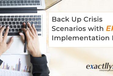 erp implementation plan