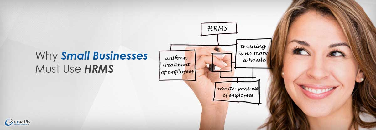 small busnesses use HRMS