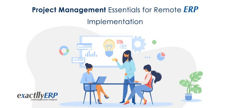 remote erp implementation