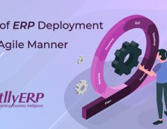 erp deployment
