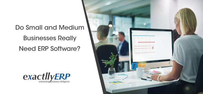 do-small-and-medium-businesses-reality-need-erp-software