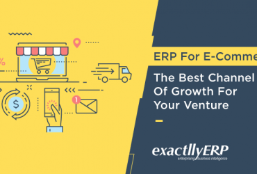 erp-for-e-commerce-the-best-channel-of-growth-for-your-venture